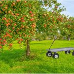 Heavy Duty Farm Wagons High Quality Wood And Metal Wagons