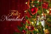 Le Grand Journal du Mexique vous souhaite un Joyeux Noël 2020 ! (Video)