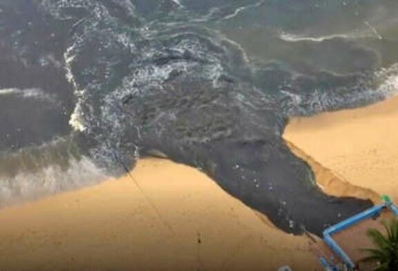 Cacapulco – Des eaux usées déversés dans la plus belle baie du Mexique ! (video)