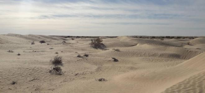 Dunes de sables