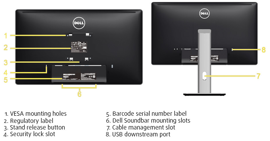 Dell Back Info