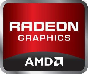 AMD Radeon R5 M335 (2GB DDR3)