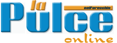 Pulce Logo PNG