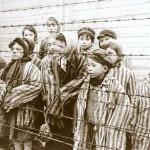 olocausto-150×150