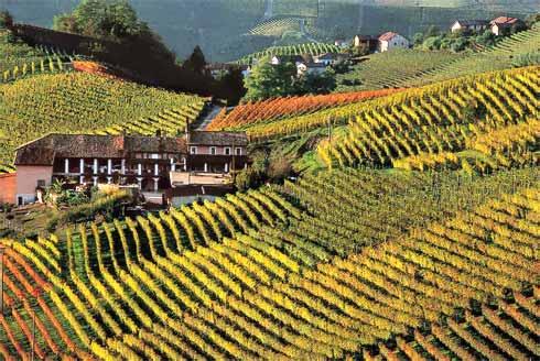 turismo-monferrato