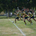 CUSPO rugby: Black Herons vittoriosi e  determinati, i Seniores lottano fino alla fine