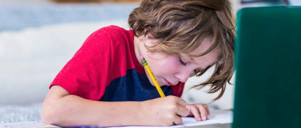 lezione scuola elementare bambino alunno dad