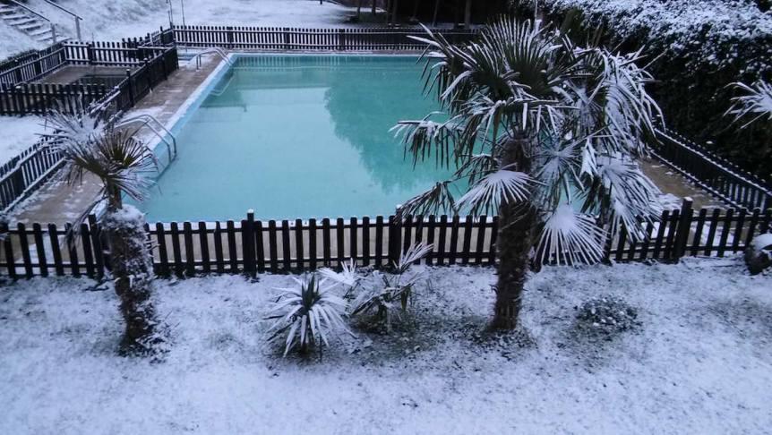 Palmeras en la nieve - La quintana del Cuera