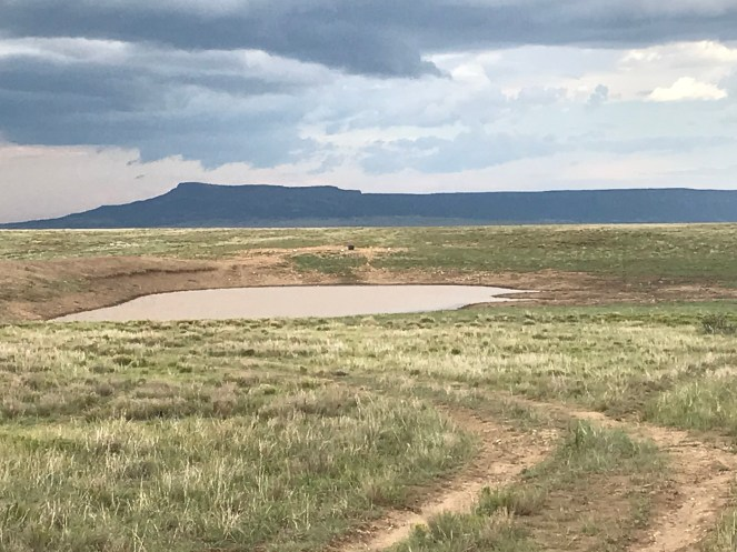 Home - Looking at water in a reservoir & Mesa De Mayo
