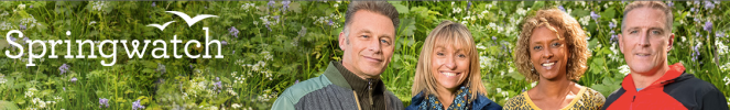 SpringWatch - our change in the world