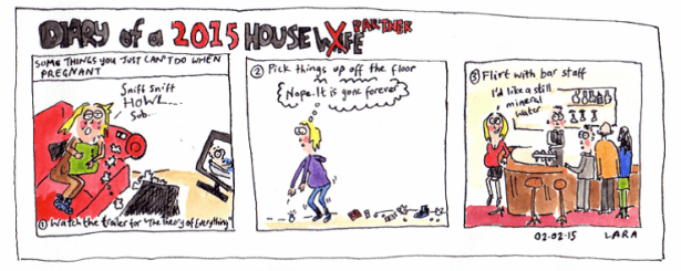 Diary of a Housewife 2015 - Things you can't do