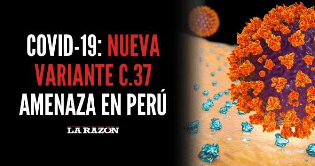 Covid-19: Nueva variante C.37 amenaza en Perú