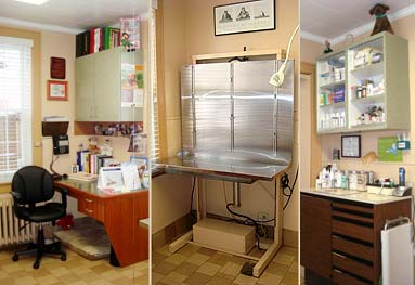 Larchmont Animal Hospital pictures of three examination rooms