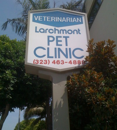 Veterinarian in Larchmont Village, Los Angeles