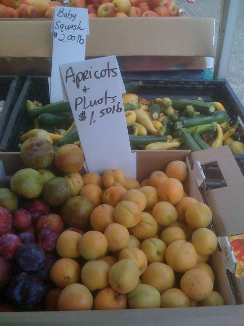 Apricots and Pluots at Farmers Market