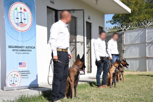 Entrega Gobierno de Estados Unidos 3 agentes caninos a Procuraduría tamaulipeca