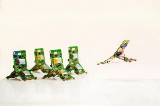 Crean robots inspirados en hormigas que actúan colectivamente