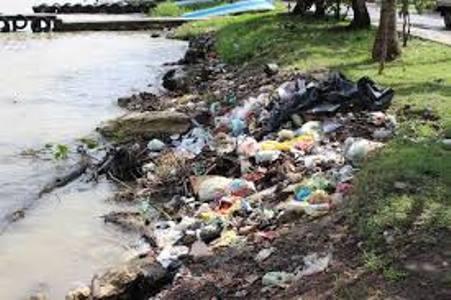 Con rejas planean evitar el ingreso de basura del Pánuco