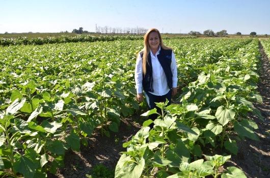 Gestiona ayuntamiento apoyo al sector agrícola