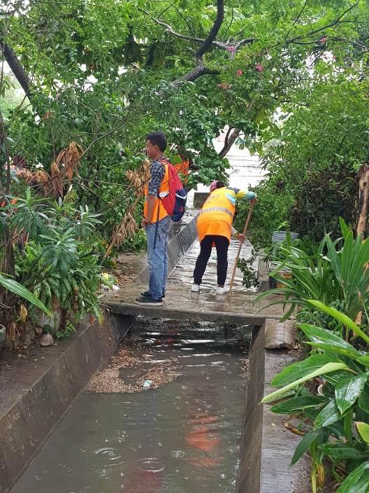 Intensifican tareas de limpieza en drenes pluviales