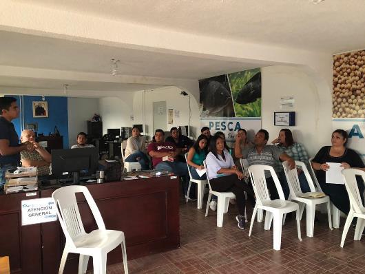 Orientan sobre programas federales en la Oficina de Gestión del municipio de Altamira