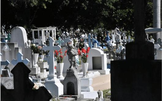 Podrían ampliar cementerio de la borreguera