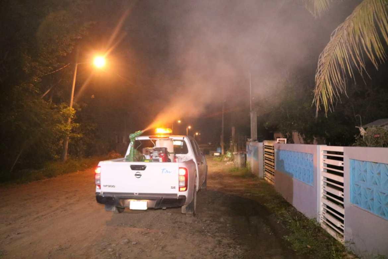 Intenso programa de fumigación en Altamira