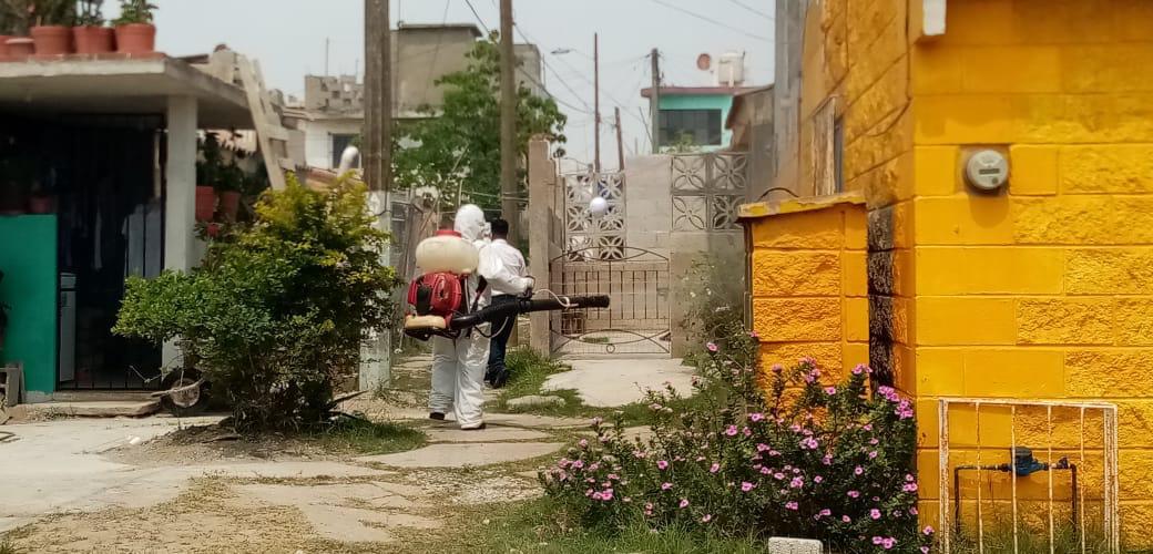 Intensifican combate al dengue en Madero