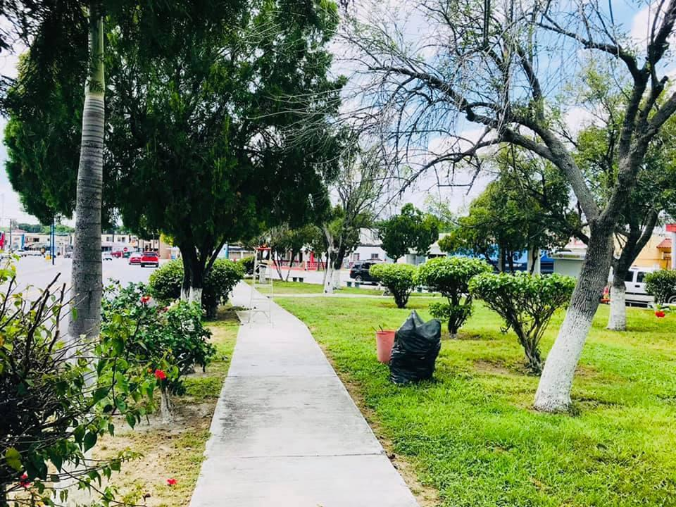 Lleva ayuntamiento mantenimiento de parques y jardines en la ciudad