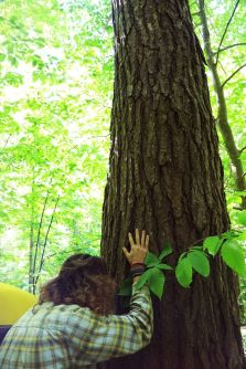 Pascal connecting with a huge hemlock tree.