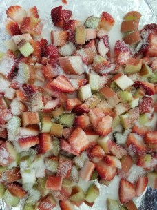 Rhubarb and Strawberries before being roasted