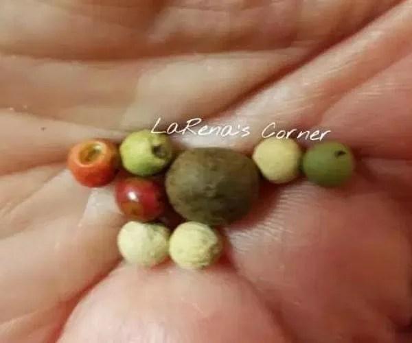 Whole Multi-Colored Peppercorns