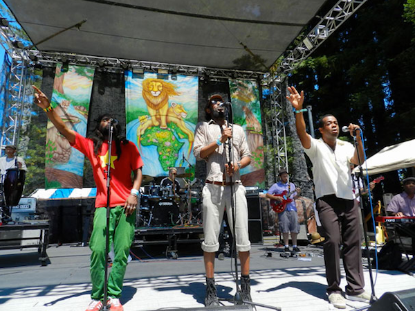 the-lions-reggae-on-the-river