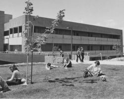 The library building was completed and opened in 1974. (Califa Digital Collections).