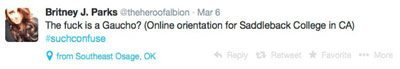 In a post on Twitter, @theheroofalbion expresses her confusion over the definition of a gaucho.