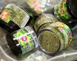 Spice, a synthetic marijuana, is a growing concern in the United States due to its deadly side effects (photograph/ Denver Policce Dept.).