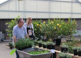 Horticulture Laboratory Technician Tina Maldini and guest gaze over some Saddleback College's plant sale (Joseph Fleming/Lariat)