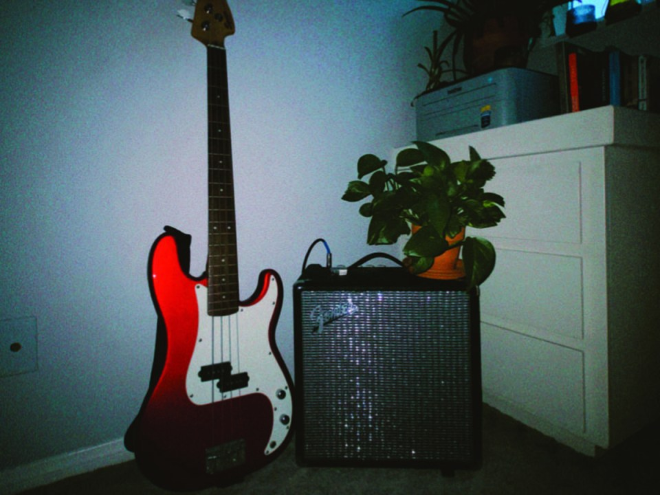 This playful philodendron stacks on top of a Fender amp with a bright red bass guitar leaning against it.