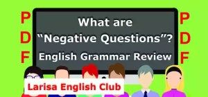 What are Negative Questions PDF
