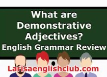 LEC What are Demonstrative Adjectives