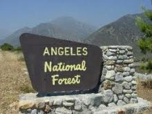 The old sign.(Courtesy Forest Camping)