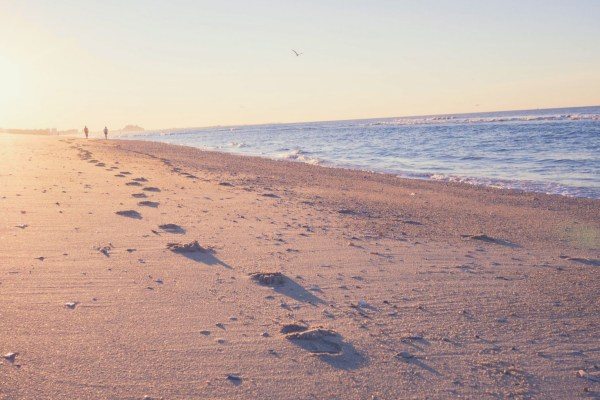 The first steps towards planning your trip