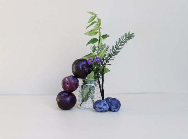 plums and greenery