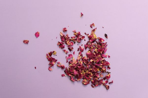 Organic rose petals on a pink background