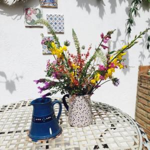 Wild flowers at La Rosilla.