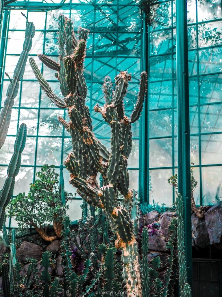 5 lieux a ne pas manquer a Lisbonne - estufa fria jardin botanique lisbonne - blog lyon
