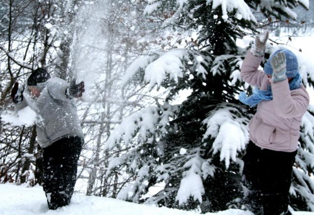 snow-fight