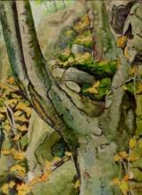 Larry Johnson artist, nature paintings, landscapes