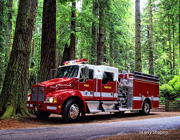Pierce fire engine in a forest