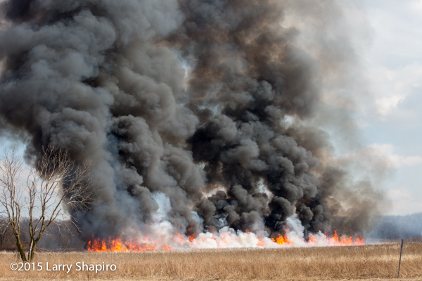 thick smoke and flames from a prescribed prairie burn